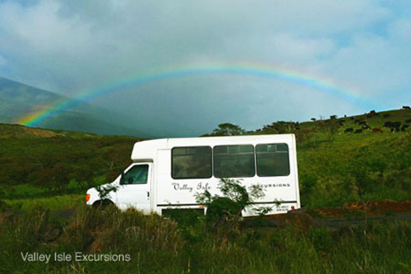 Valley Isle Hana Picnic  Maui Locals Guide  Maui Info For Travelers Not To
