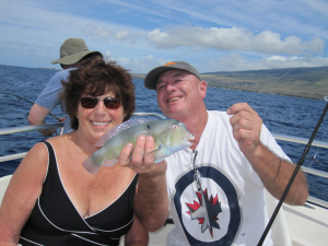 maui locals guide, ufo fishing, whale watching